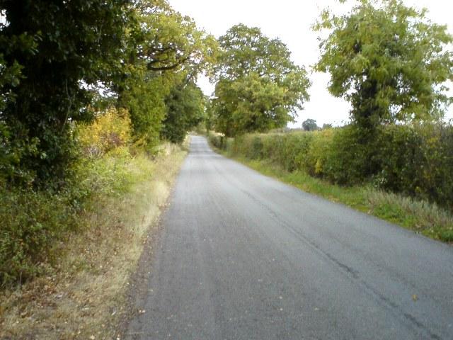 Lane leading to Culpho