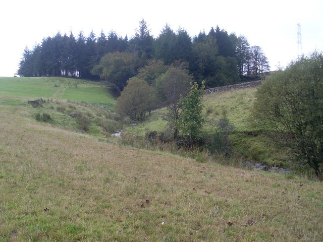 Small glen cut into hills north of Tambowie
