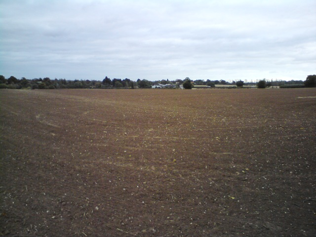 Farmland between Bealings, Grundisburgh and Hasketon