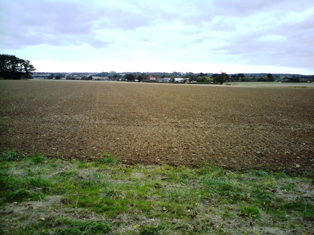 Hasketon Farmland