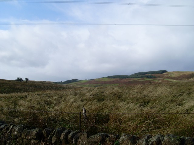 Moorland in the Kilpatrick Hills