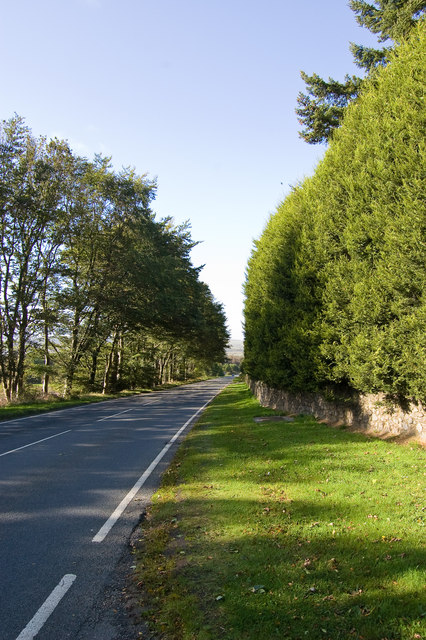 Down the Hill to Dyce