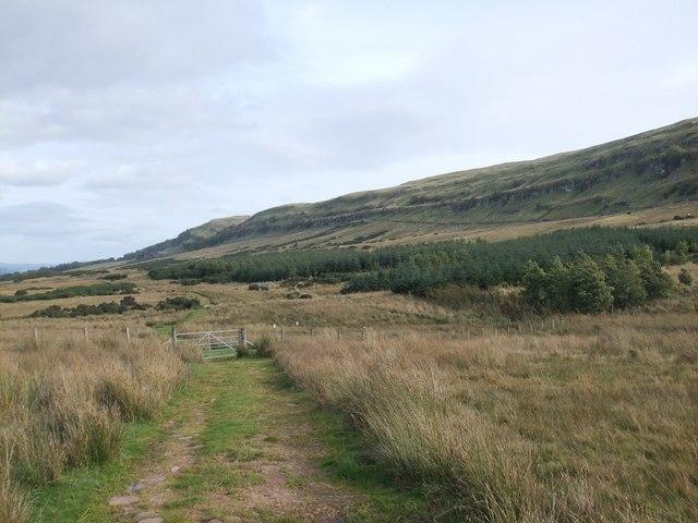 Farm track Gargunnock Hills