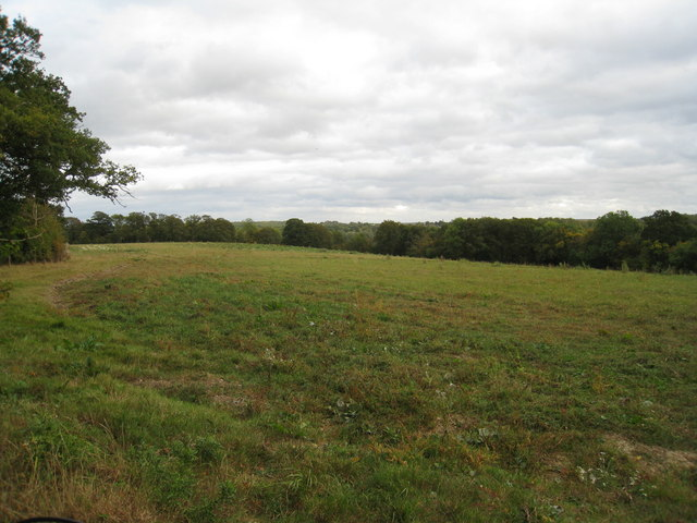 Farmland south of Ashmoor Lane
