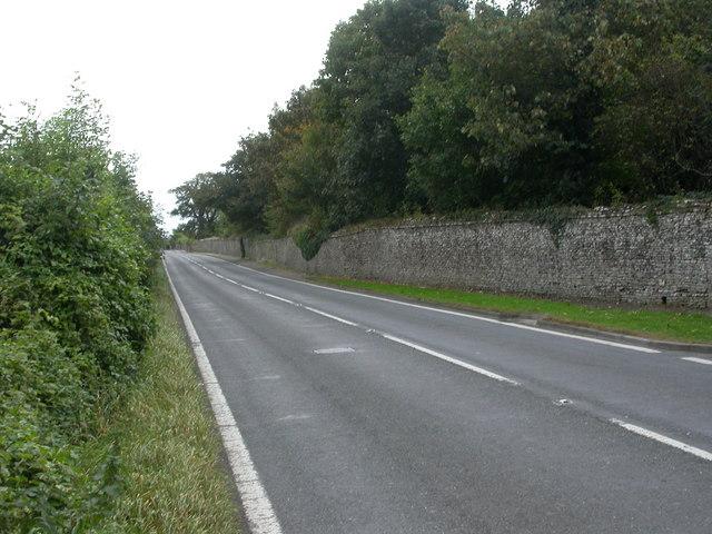 Stalbridge Park, wall