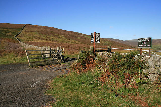 A cattle grid on the road to Caddonhead Farm