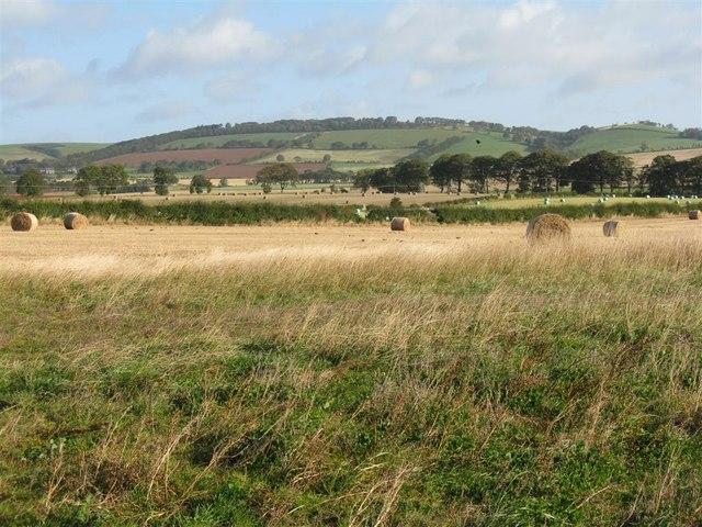 Autumn fields at New Mills