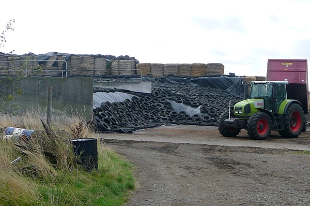 Silage clamp at Bilton Barns