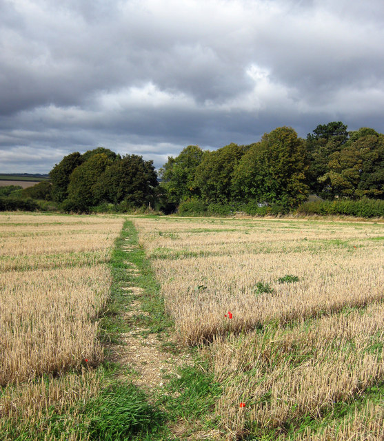 Footpath to Thorganby