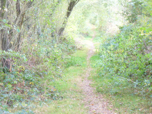 Path to Durfold Wood