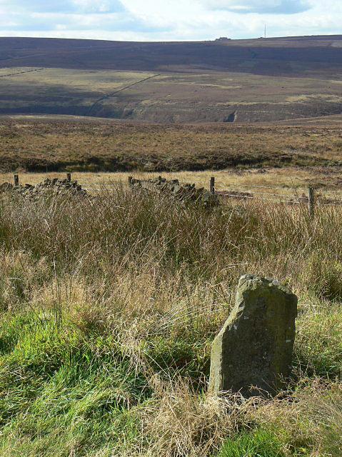 Moorland milestone (2)