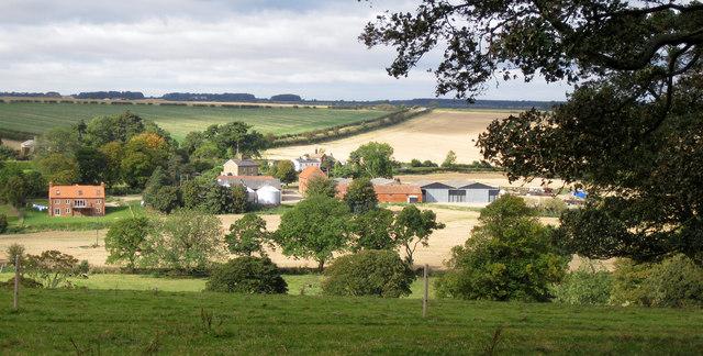 Thorganby House Farm