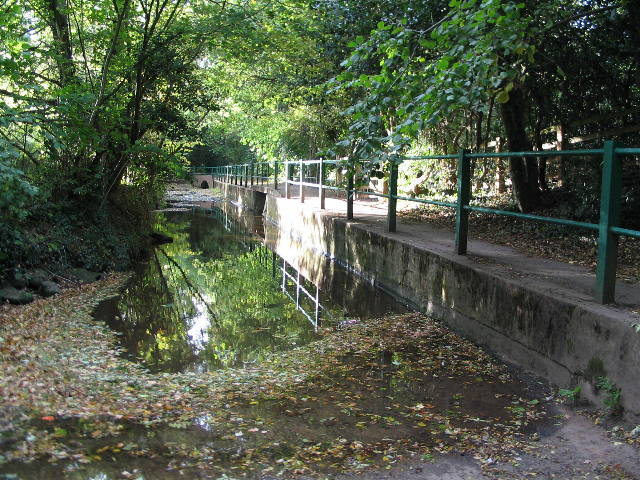 Canley Ford