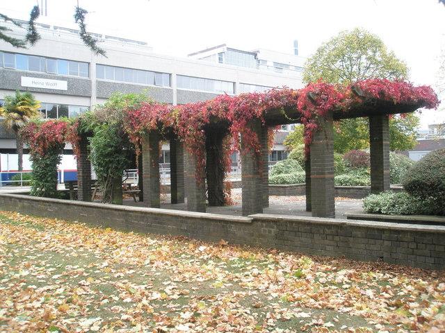 Pergola at Brunel University