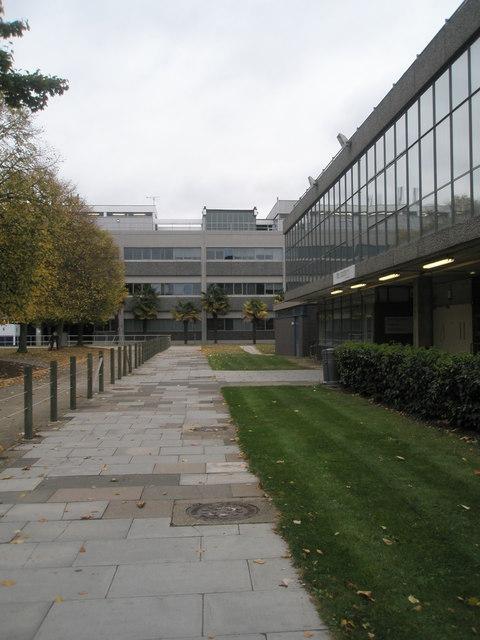 Path within Brunel University