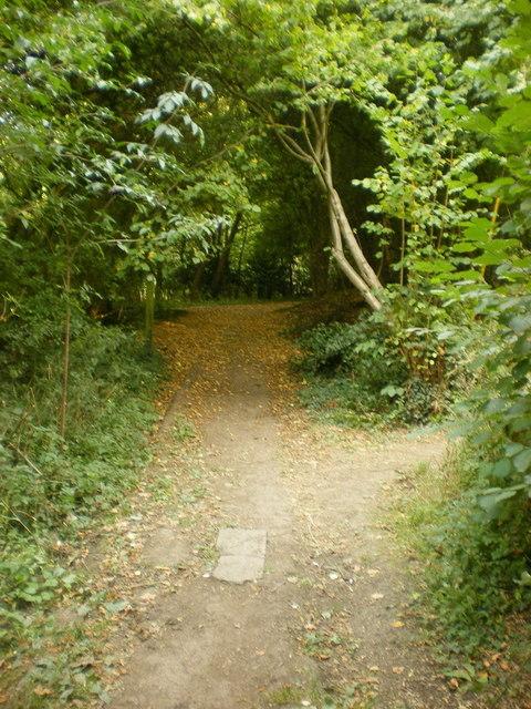 Marsh Lane west of Gibberd Gardens