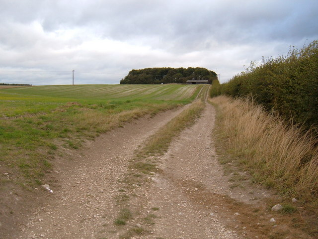 Track to Farm Buildings
