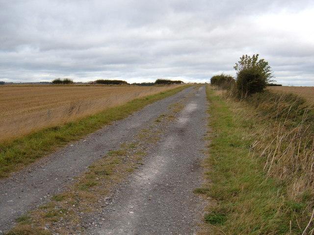 Track to  Balnch Farm (Public Footpath)