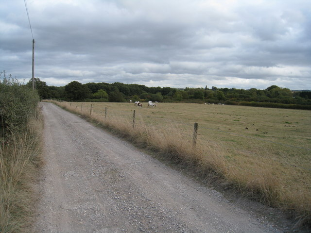 Access track to Hodds Farm