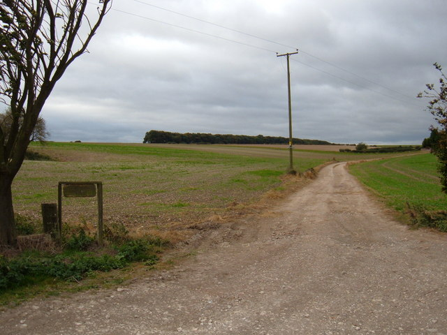 Track to  Shiptondale Farm