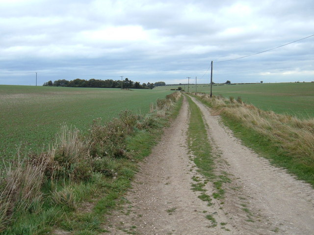 Track to  Stephenson Wold
