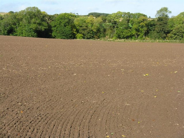 Newly sown wheat field at Williamrig