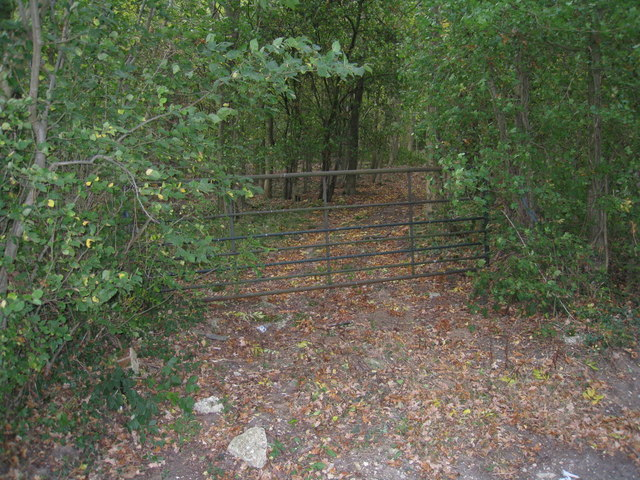 Access to Virnell's Copse