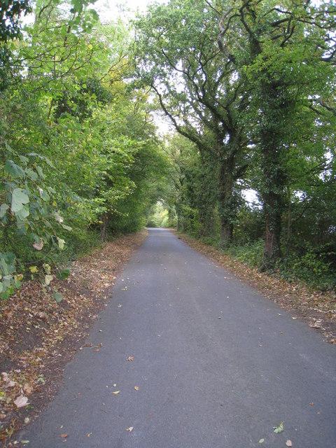 Looking along Ashmoor Lane