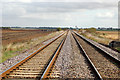 TL6484 : Railway at Shippea Hill by Andy F