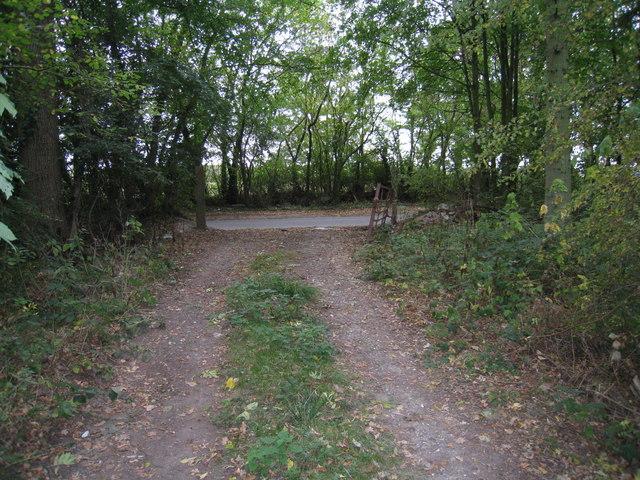 Open gate - Ashmoor Lane