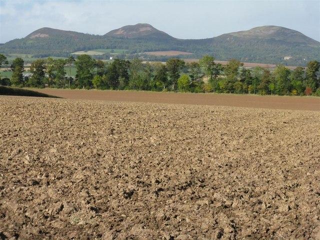 Newly ploughed field near Wellrig
