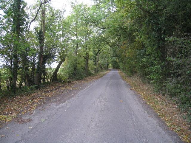 Ashmoor Lane
