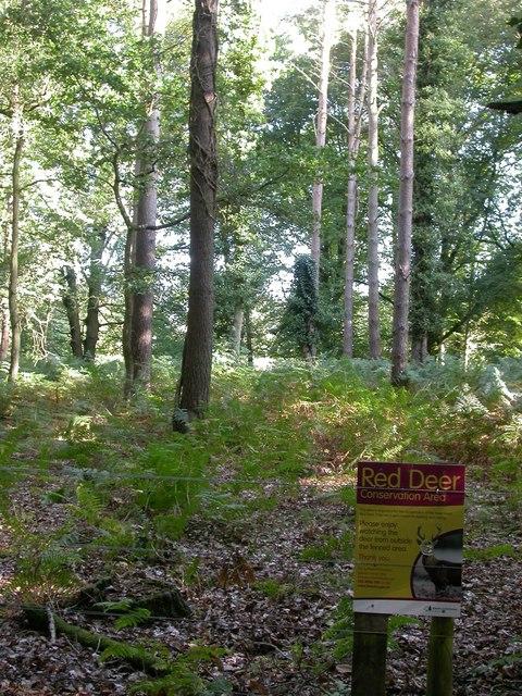 Aldridgehill Inclosure, conservation area
