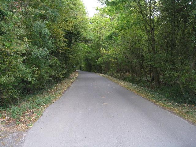 Ashmoor Lane - early autumn