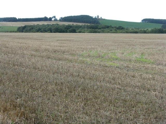 Stubble fields at Woodhead