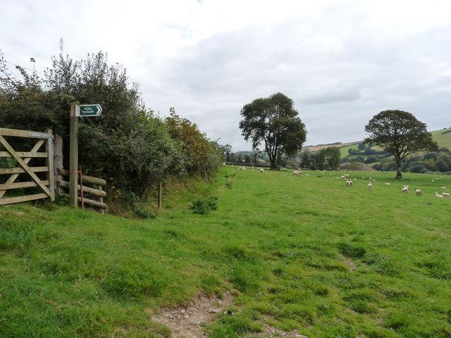 A footpath near Goodleigh just down the road from Dean Farm