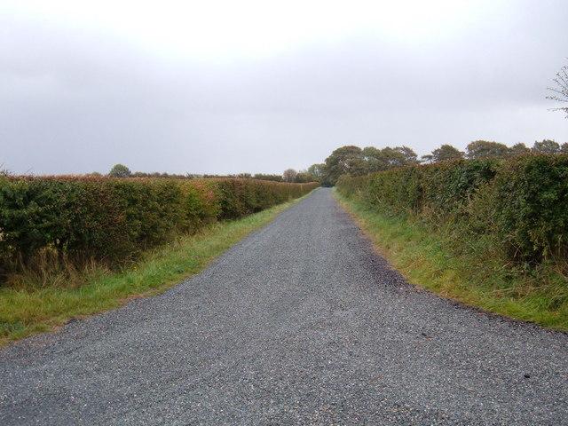 Track to  Holmedale Farm