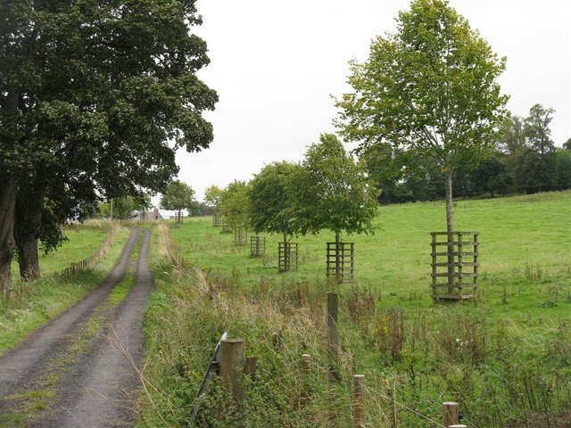 The entrance to Ancrum Park