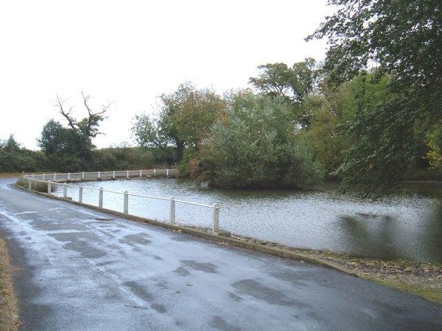 Duck Pond, South Dalton