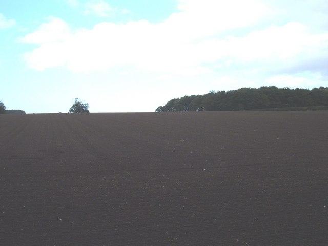 Farmland near South Dalton