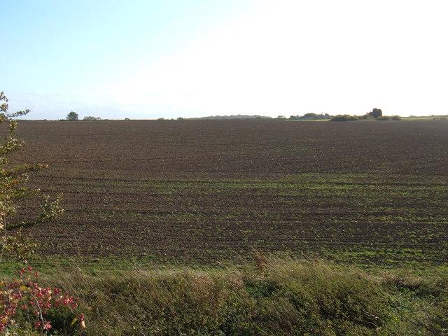 Farmland East of Parkhouse