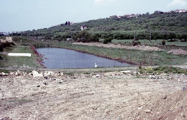 Old borrow dyke, Hadleigh Marshes