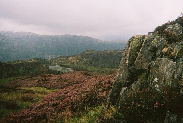 Lingmoor Tarn