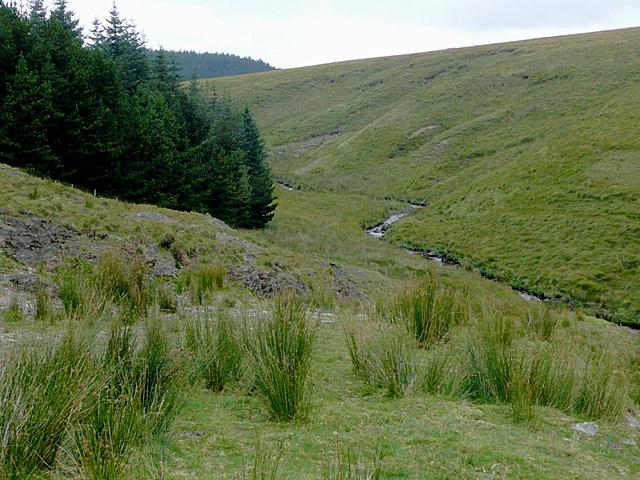 Cwm Irfon by Drum Nantygorlan, Powys
