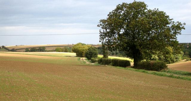Track to Priory Farm