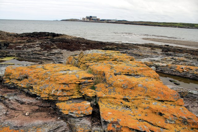 Rocky beach at Cemlyn Bay, Anglesey