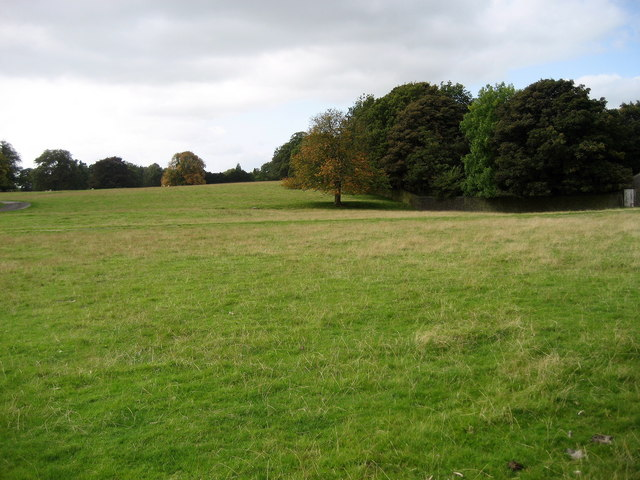 Parkland to the East of Broughton Hall