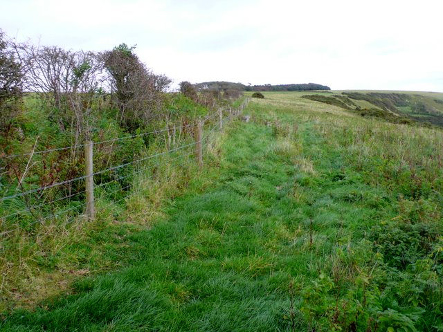 White Hill Dorset