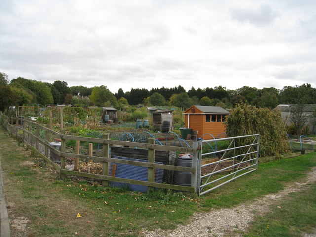 Old Basing allotments