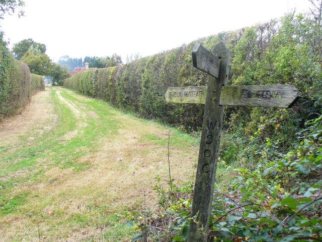 Path by Haymans Farm